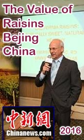 Benefits of Raisin Talk in Bejing China Motivational Speaker on The Raisins